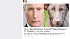 Asifa Bhutto shared photo of Putin resembling dog